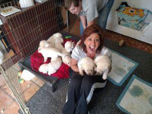 FB_Puppies4